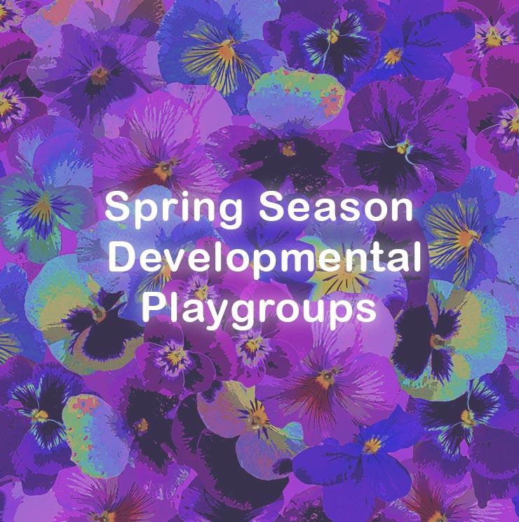 Spring Enrollment
